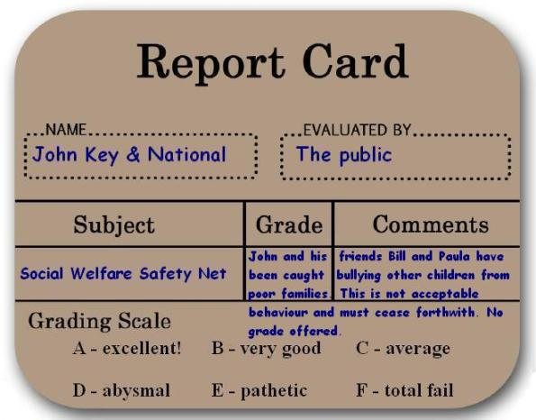Social Welfare Safety Net